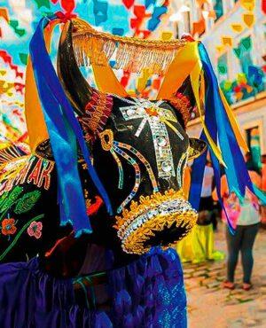 Cultura Brasileira: Tradições e Festas Populares